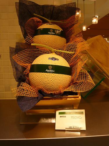 Des melons dans leurs boîtes de présentation, prêts à être offerts.