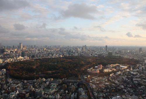 Le Meiji Jingu est au cœur du parc Yoyogi. Vous pouvez apercevoir les toitures vertes du complexe au milieu des arbres.