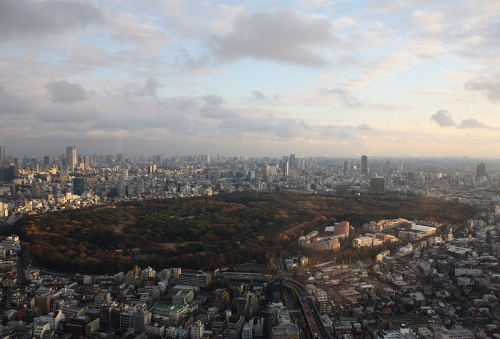 The Meiji Jingu and adjoining Yoyogi Park. You can just make out the green copper roofs of the central shrine complex amongst the trees.